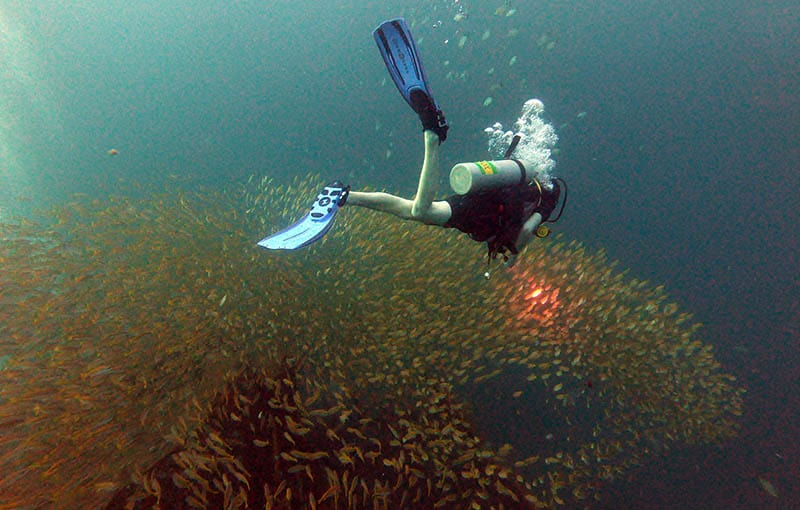 Thailand Liveaboard Wreck Diving