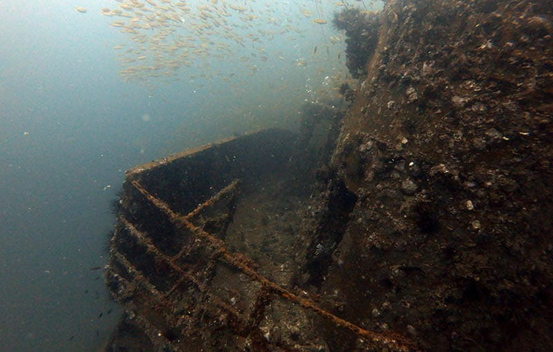 MV Giamani Thailand Wreck Diving