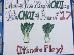 Some candidates rhyme, some draw vegetables.