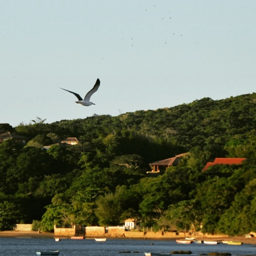 Natureza, Búzios - RJ, by Luciana de Paula, 2016