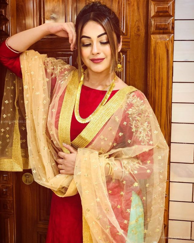 Image result for shenaaz gill hd poster