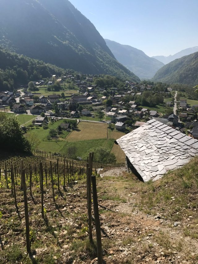 Savoie from the Sky–A Video Tour of Coteau de Cevins