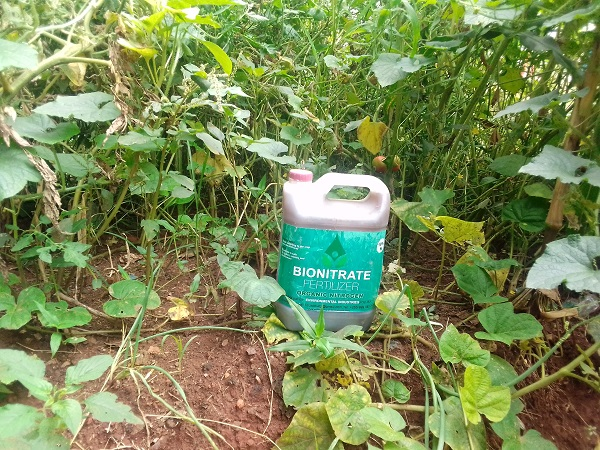 A Gallon of Bionitrate Fertilizer | The Nation Online