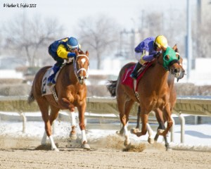 Lewis Meadow (1) ridden by D. Cardenas and Dreamofjean E. (2) ridden by T. Thornton in the second race of Hawthorne's Saturday card (2-28-15)