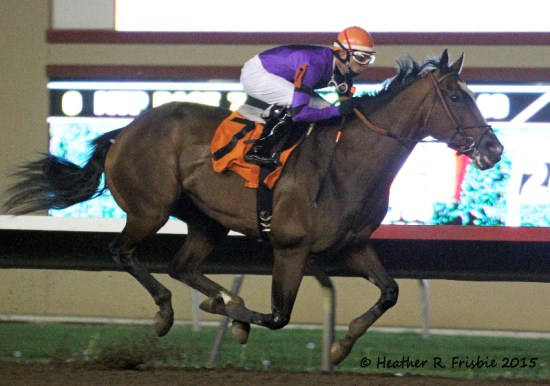 Bourbon County cruising to victory in the 10,000 Lakes