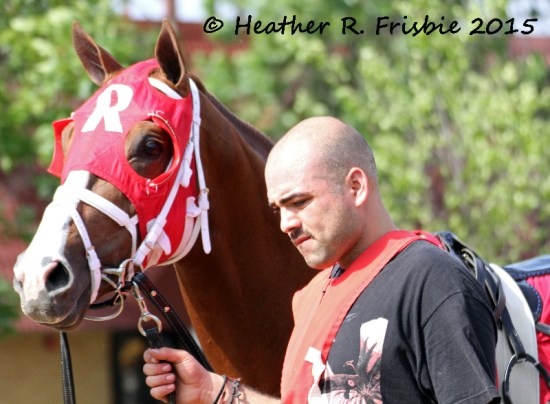 Honor the Kitten in the paddock prior to the Brooks Fields