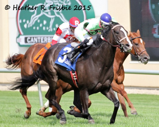 Stoupinator late charge wins the HBPA Distaff