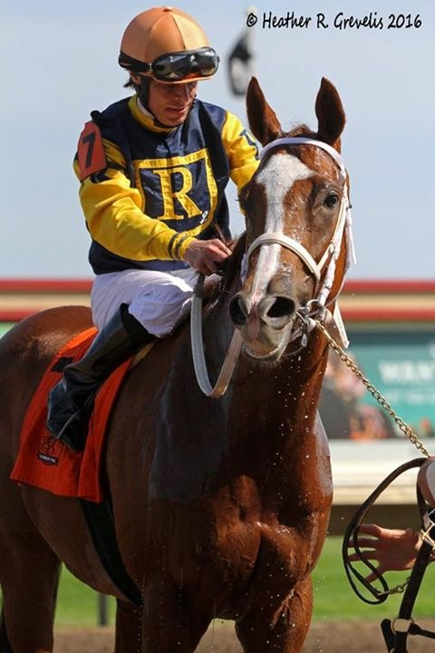 RIchies Sweetheart enters the winners' circle after taking the Honor The Hero stakes with E.T. Baird aboard.