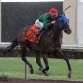 Fireman Oscar Takes MTA, Gives Loveberry 13 Wins Over Weekend