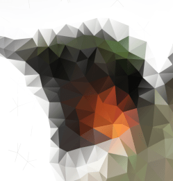 Colibri-Poligon-Cuts_07