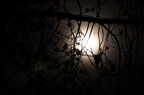 Vollmond 20140316-2