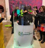 une artiste dans un cylindre avec partie haute transparente et base blanche personnalisée avec logo de la marque de chanpagne Perrier Jouet avec un groupe de participants à une team building fresque oeuvre commune à Epernay