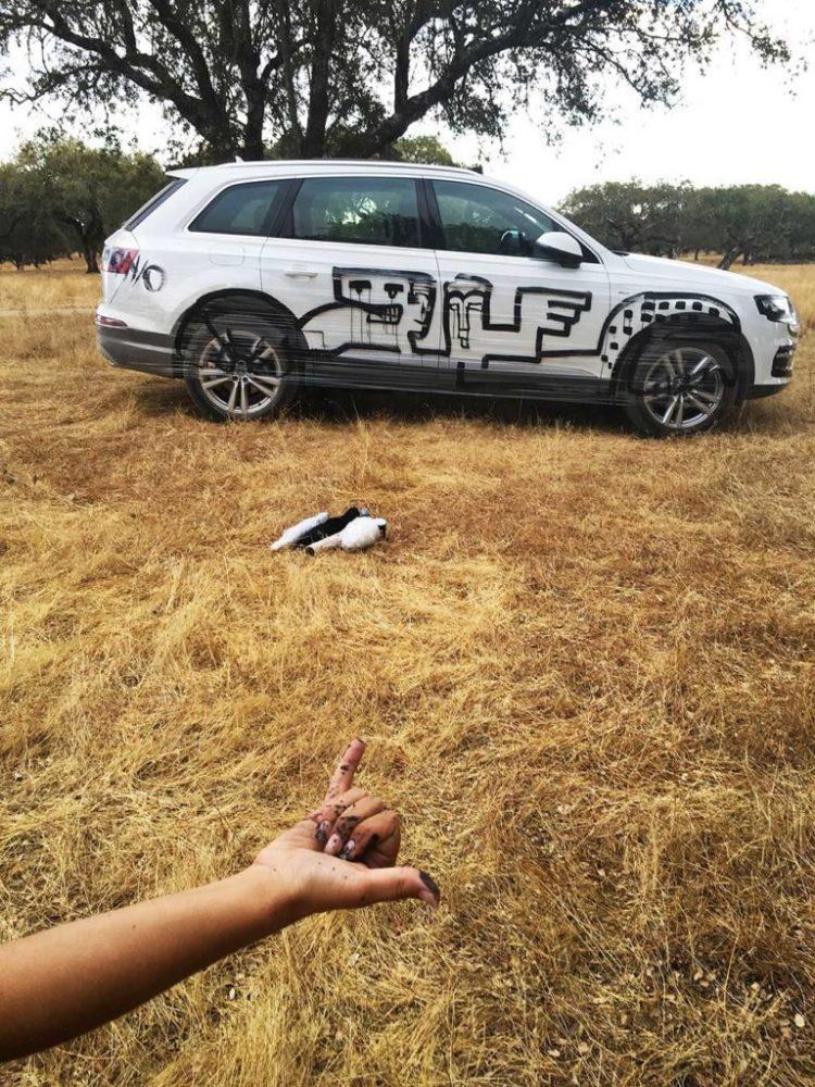 Animation extérieure Land Art sur Audi Q7 blanc au Portugal par aNa.