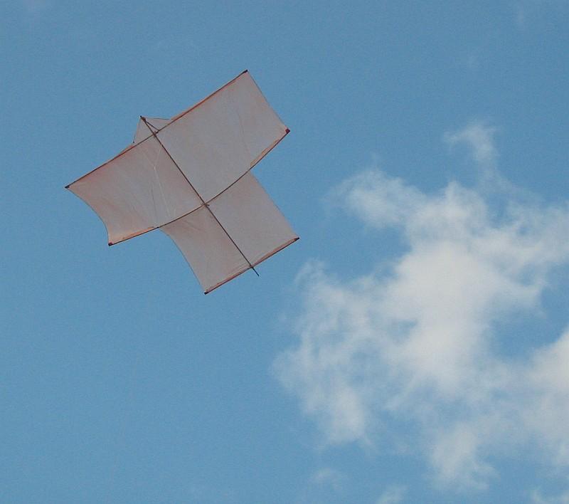 Fighter Kites | Kite Club India | Kite Flyers India