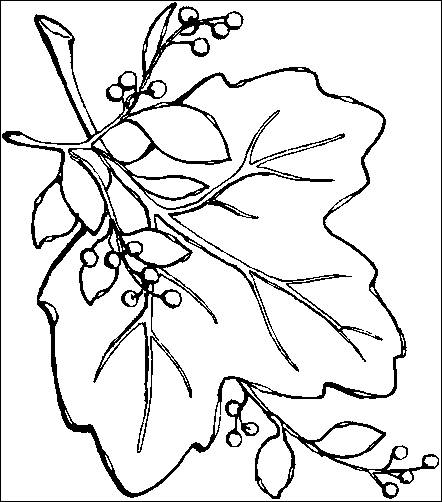 back to coloring pages autumn category