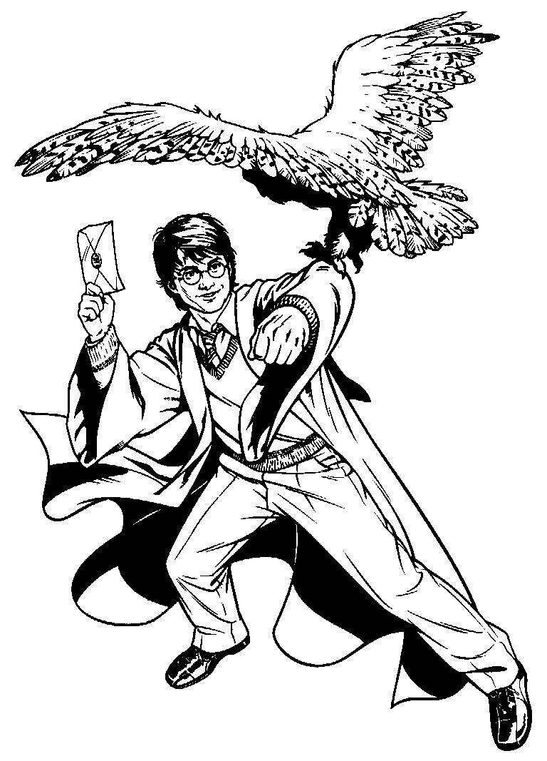 Page 529 harry potter coloring pages picture activity harry potter