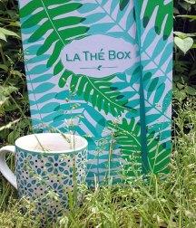 la-the-box-detox-juin-2016