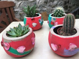 Cactus-minus