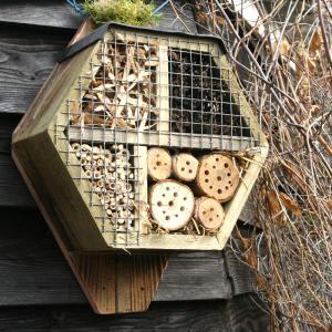 bijenhotels | Insectenhotels