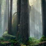 Pete's Dragon (2016) – film review