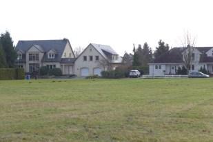 Unsere Nachbarn am Ende des Grundstücks
