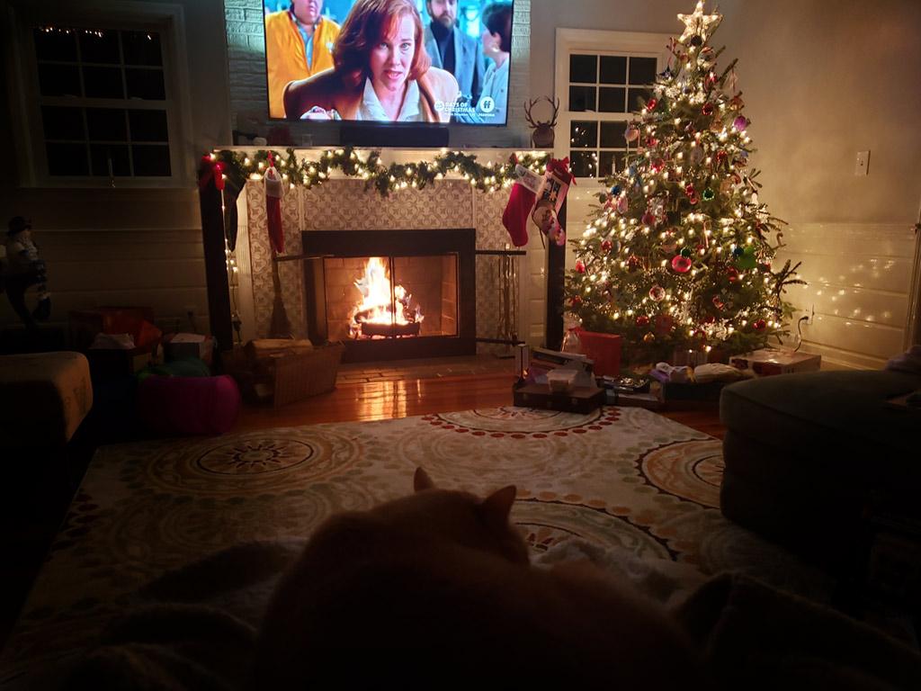 Mid-Century Modern Christmas Living room