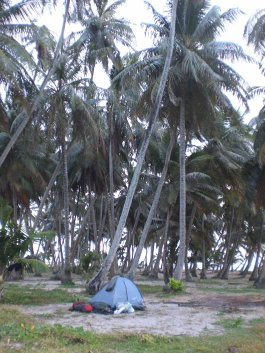 My tent - palm trees and sand. Could it be more lonely?