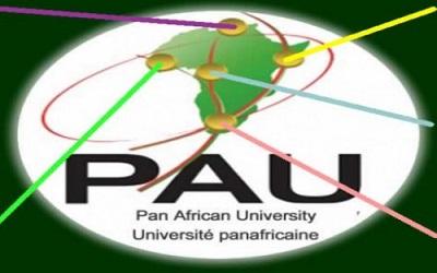 LES BOURSES DE L'UNIVERSITÉ PANAFRICAINE : POSTULEZ EN LIGNE !