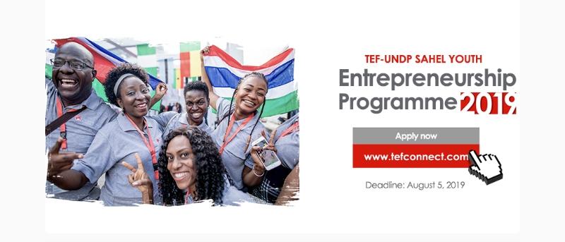 Afrique/ Programme d'entrepreneuriat des jeunes du Sahel TEF-UNDP : ce qu'il faut savoir