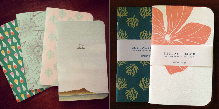 Bradley and Lily Notebooks