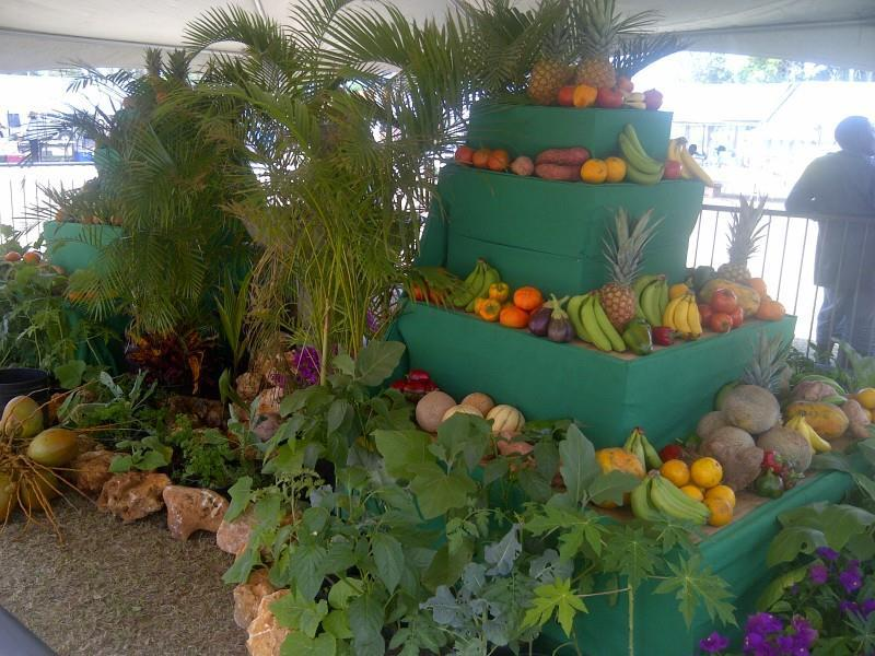 Locally grown fruits and vegetables - Stall at Agriculture Department Open Day