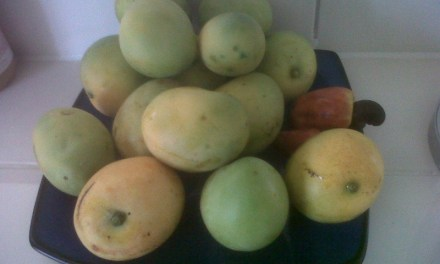 Local fruits and Vegetables in Anguilla
