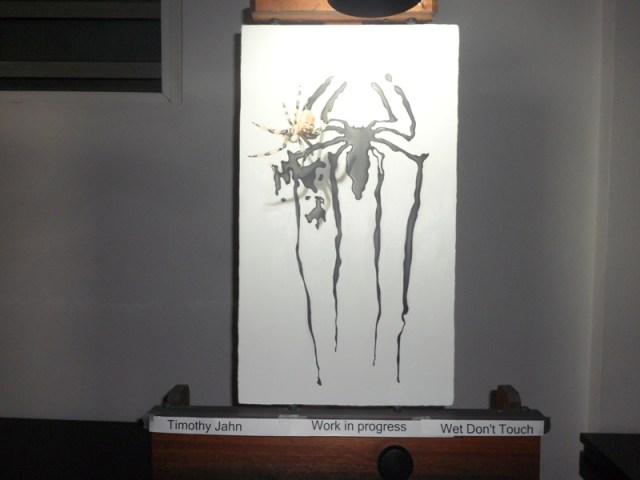 Timothy W. Jahn - Ani Art Academy, Anguilla