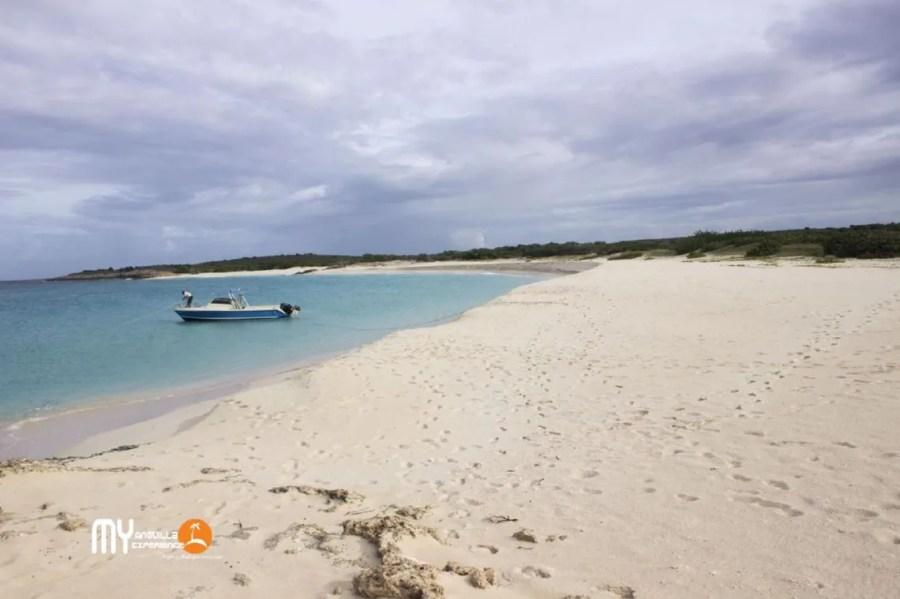 Arrive at Great Bay - Dog Island