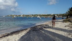 Sherise walking on the beach