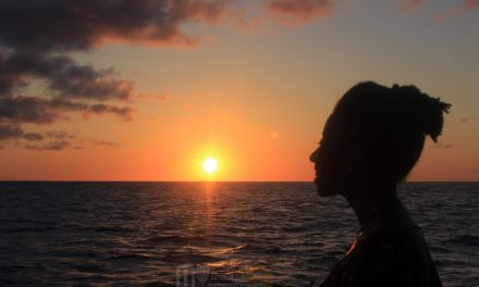 Sunset Cruise with Calypso Charters