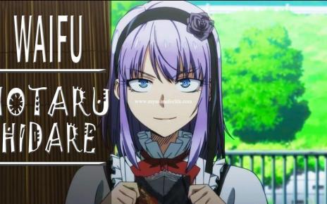 The Best Waifu Hotaru Shidare - Dagashi Kashi
