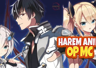 Top 10 Harem Anime With OP MC