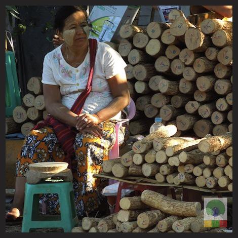 Thanaka - burmese make-up Myanmar (Burma) 6