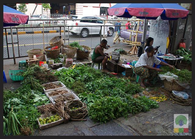 Natural Medicines Stall - Yangon - Myanmar (Burma) 3