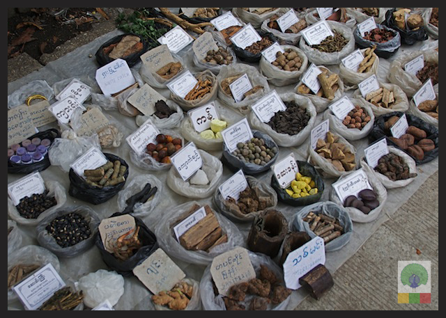 Natural Medicines in Myanmar