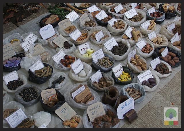 Natural Medicines Stall - Yangon - Myanmar (Burma)