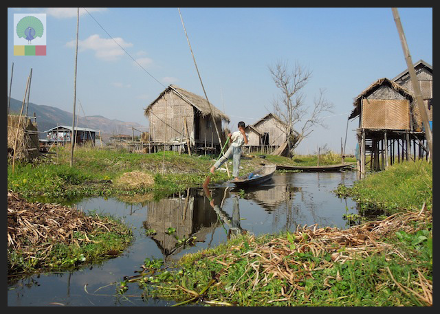 Floating Gardens Inle Lake - Myanmar (Burma) 2