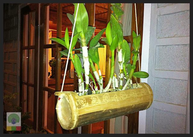 Bamboo Plant Pot - Myanmar (Burma)