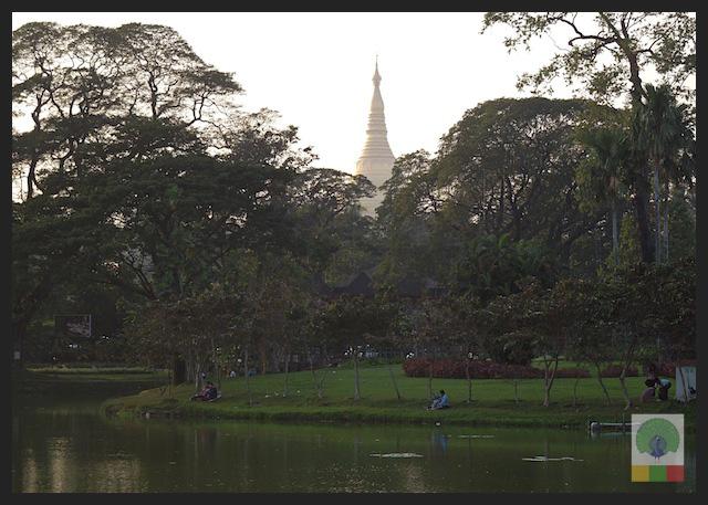 Kandawgyi Lake - View of Shwedagon Pagoda - Yangon - Myanmar (Burma)