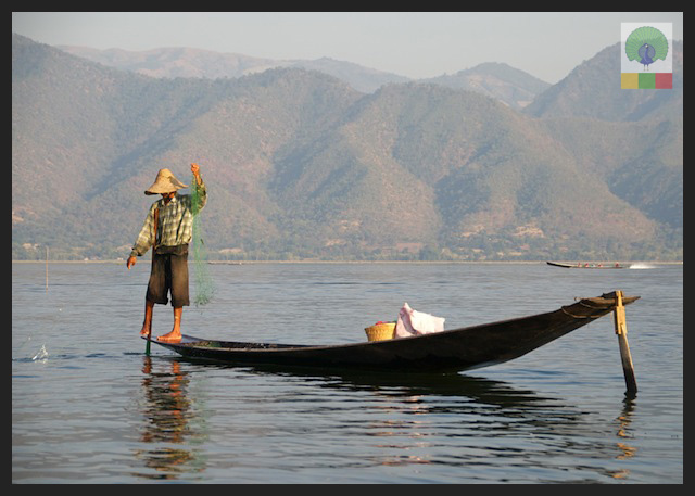 The Art of Fishing and One Leg Paddling, Inle Lake