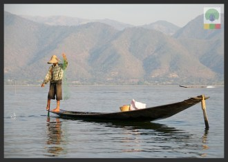 One leg paddling fisherman - Inle Lake - Myanmar (Burma) 3