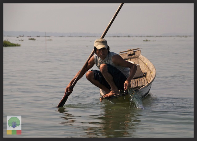 One leg paddling fisherman - Inle Lake - Myanmar (Burma) 5