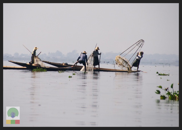 One leg paddling fisherman - Inle Lake - Myanmar (Burma) 7