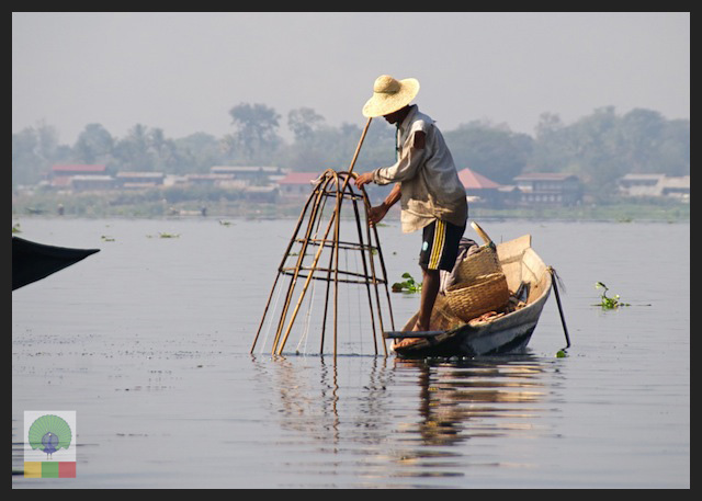 One leg paddling fisherman - Inle Lake - Myanmar (Burma) 9